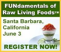 FUNdamentals of Raw Living Foods in Santa Barbara!