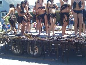 Seaweed Float