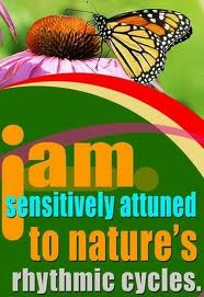 attuned to nature