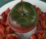 Black sea man tomatoes