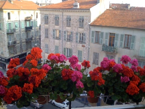 Geraniums on Balcony